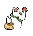 ふろしき文鳥 その三(個別スタンプ:33)