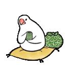 ふろしき文鳥 その三(個別スタンプ:35)