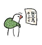 ふろしき文鳥 その三(個別スタンプ:36)