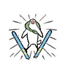 ふろしき文鳥 その三(個別スタンプ:37)