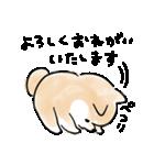 敬語をしゃべる犬(個別スタンプ:18)