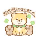 しばころ★つかえる敬語+日常★(個別スタンプ:24)