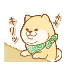しばころ★つかえる敬語+日常★(個別スタンプ:40)