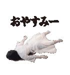 【貞子】貞子のお友達スタンプ(個別スタンプ:31)