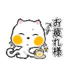 白ネコちゃんです。敬語です。(個別スタンプ:3)