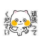 白ネコちゃんです。敬語です。(個別スタンプ:5)