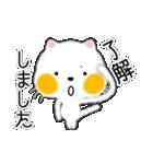 白ネコちゃんです。敬語です。(個別スタンプ:11)