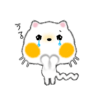 白ネコちゃんです。敬語です。(個別スタンプ:17)