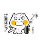 白ネコちゃんです。敬語です。(個別スタンプ:19)