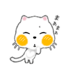 白ネコちゃんです。敬語です。(個別スタンプ:26)