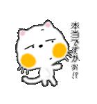 白ネコちゃんです。敬語です。(個別スタンプ:34)