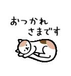 猫・ねこ・ネコのゆる敬語【毎日使える】(個別スタンプ:16)