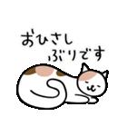 猫・ねこ・ネコのゆる敬語【毎日使える】(個別スタンプ:18)