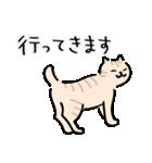 猫・ねこ・ネコのゆる敬語【毎日使える】(個別スタンプ:19)