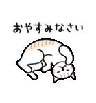 猫・ねこ・ネコのゆる敬語【毎日使える】(個別スタンプ:24)