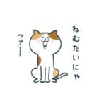 レモンちゃんと犬と猫
