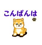 ちび秋田犬 でか文字敬語(個別スタンプ:3)