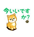 ちび秋田犬 でか文字敬語(個別スタンプ:5)