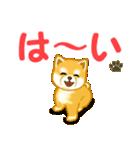 ちび秋田犬 でか文字敬語(個別スタンプ:13)