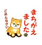 ちび秋田犬 でか文字敬語(個別スタンプ:24)