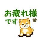 ちび秋田犬 でか文字敬語(個別スタンプ:25)