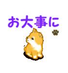 ちび秋田犬 でか文字敬語(個別スタンプ:26)