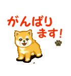 ちび秋田犬 でか文字敬語(個別スタンプ:29)
