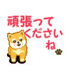 ちび秋田犬 でか文字敬語(個別スタンプ:30)