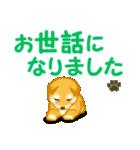 ちび秋田犬 でか文字敬語(個別スタンプ:34)