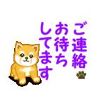 ちび秋田犬 でか文字敬語(個別スタンプ:36)