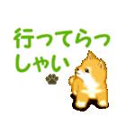 ちび秋田犬 でか文字敬語(個別スタンプ:37)
