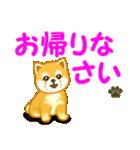 ちび秋田犬 でか文字敬語(個別スタンプ:40)