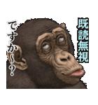 ちんぱん人2(個別スタンプ:20)