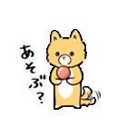 てんちゃんのまいにちスタンプ(個別スタンプ:01)