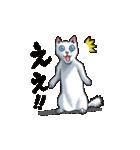 「瞬く」の白猫は見た(個別スタンプ:02)