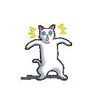 「瞬く」の白猫は見た(個別スタンプ:06)