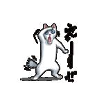 「瞬く」の白猫は見た(個別スタンプ:11)