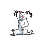 「瞬く」の白猫は見た(個別スタンプ:14)