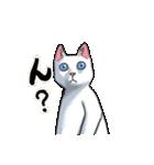 「瞬く」の白猫は見た(個別スタンプ:20)