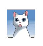 「瞬く」の白猫は見た(個別スタンプ:23)