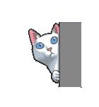 「瞬く」の白猫は見た(個別スタンプ:33)