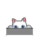 「瞬く」の白猫は見た(個別スタンプ:35)
