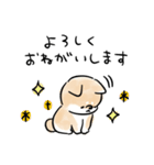 日常会話をする犬(個別スタンプ:05)