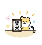 ゆる柴犬スタンプ10・新元号(個別スタンプ:04)