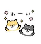 ゆる柴犬スタンプ10・新元号(個別スタンプ:15)