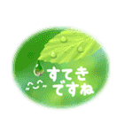 -Forest- 緑の詰め合わせ(個別スタンプ:36)