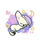 可愛いチワワの子犬(個別スタンプ:02)