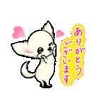 可愛いチワワの子犬(個別スタンプ:05)