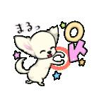 可愛いチワワの子犬(個別スタンプ:06)