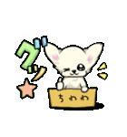 可愛いチワワの子犬(個別スタンプ:07)